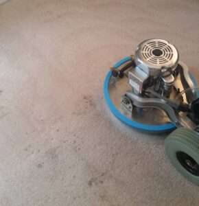 ProDry Floor Care Blog | Professional Carpet Cleaning Services
