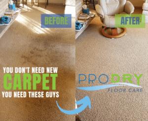Cincinnati Carpet Cleaning