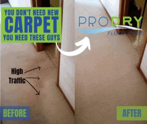 Oriental Rug Cleaners   ProDry Floor Care