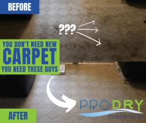 Carpet Cleaning Services in Cincinnati