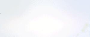 video-bg